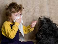 Dog Bad Breath Causes